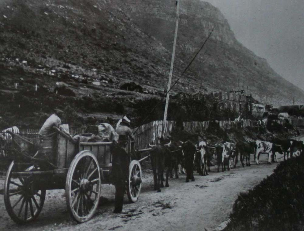 Camps Bay Culture & History